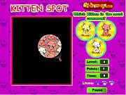 Kitten Spot