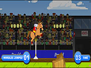 Pepcid Horse Jumping