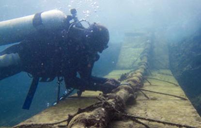 NPH Việt cần có hệ sinh thái riêng để tránh chuyện đứt cáp