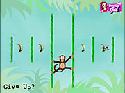 Game Jungle Spider Monkey